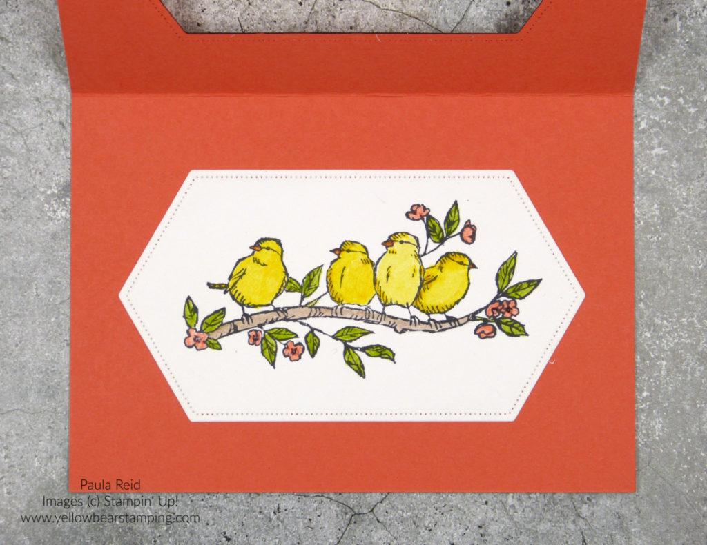 Bird Ballad - Watercolour Pencils